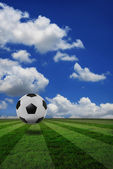 Soccer football on green field — Stock Photo