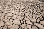 Dry soil cracked use for multipurpose — Stock Photo