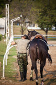 Horse and soldier — Stock Photo