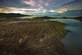 Seaweed on rock beach and sunset sky — Stock Photo