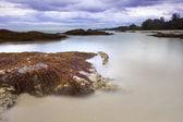 Algas en roca playa y puesta de sol el cielo — Foto de Stock
