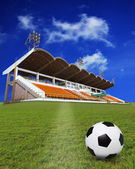 Soccer football on green field with stadium background — Stock Photo
