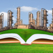 Petrochemical industry on green grass field good environment — Stock Photo