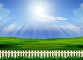 Beautiful grass field and wood fence use for natural background — Stock Photo