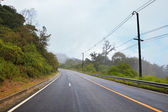Asphalt road on mountain with natural fog and forest — Stock Photo