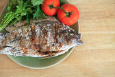 Grilled fish with fresh tomatos — Stock Photo