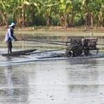 Thai farmer preparing mud field for weeding rice by agricultural machine — Stock Photo