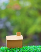 Home making from old recycle paper box lying on green grass fiel — Stock Photo