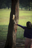 Girl feeding food to squirrel on tree plan in public park — Stock Photo