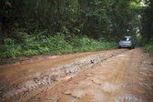 Car in nature track off road in rain forest wilderness — Stock Photo