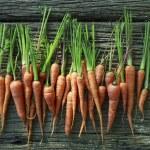 Fresh carrot on wood texture — Stock Photo #38839765