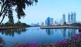 Krajina krásné vody fond dominanty města lif — Stock fotografie