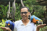 Asian man and hyacine macaw birds — Stock Photo