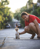 Girl playing with pomeranian puppy dog in home village — Stock Photo