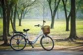 Old vintage bicycle in public park with green nature concept — Stock Photo
