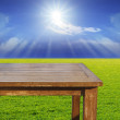 Empty free space top wood table on green grass field against sun — Stock Photo #46572271