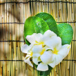 White frangipani flowers bouquet decorated in green leaves laying on bamboo wood mat with copy space — Stock Photo #46722317