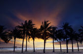 Beautiful  twilight sky and dusky with silhouete coconut tree on — Stock Photo