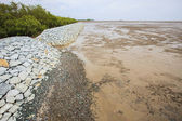 Rock dam protection sea mangrove form natural sea storm damage f — Stock Photo