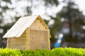 House model make from wood stick on artificial grass field with  — Stock Photo