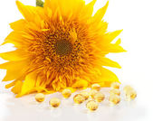The sunflower and capsules with vitamins A and E — Stock Photo