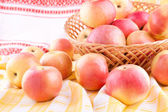 The apples scattered on the tablecloth — Stock Photo