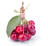 The bunch of fresh cherries with big cherry leaf — Stock Photo