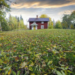 Stock Photo: Red little cottage and autumn leaves