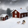 Red houses in snow forest under full moon — Stok fotoğraf