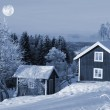 Houses in snow forest under full moon — Stock Photo