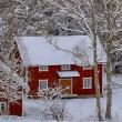 červené domky a zasněžené zimní — Stock fotografie