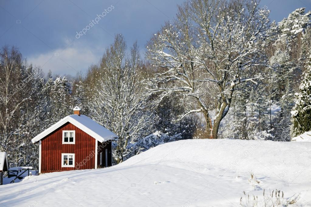 Red cottages surrounded by snow and ice, winter scenery in sweden — Stock Photo #16497189