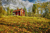 Small red farms in springtime green fields — Stockfoto