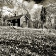 Old rural landscape in black and white - Stock Photo