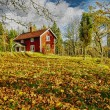Old rural nature as oil painting - Stockfoto