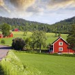 Small red farms in springtime green fields — Stock Photo #31768119