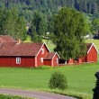 Small red farms in springtime green fields — Stock Photo