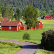 Small red farms in springtime green fields — Stock Photo #31768201