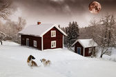 Red houses in snow forest under full moon — Stock Photo