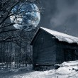 Old rural barn, winter scenery and full-moon — Stock fotografie