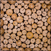 Cross Section View of Decorative Cutting wood — Foto Stock