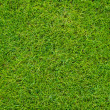 Colseup Beautiful green grass pattern from golf course — Stock Photo