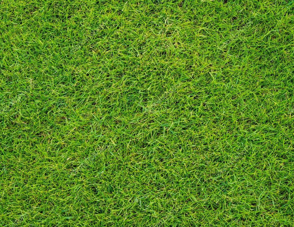 Colseup beautiful green grass pattern from golf course for Pretty grass