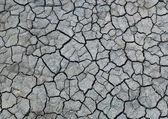 Terreno secco — Foto Stock
