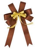 Gift bow — Stock Photo