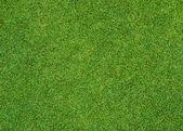 緑の草のパターン — ストック写真