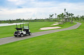 Golf cart — Stockfoto
