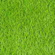 Artificial Green Grass Field — Stock Photo #35126783