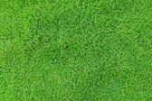 绿草模式 — 图库照片