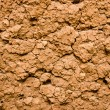Dry and cracked red earth backgroun — Stock Photo